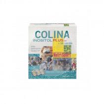 COLINA INOSITOL PLUS + TE VERDE NUTRISPORT