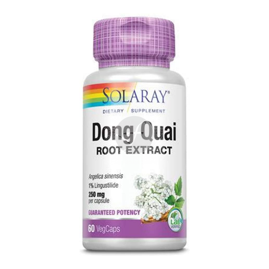 Angelica Cap Dong Quai 550Mg Solaray
