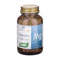 Quelato Magnesio comprimidos 100Mg Santiveri