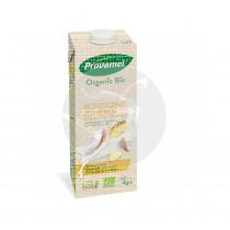 Bebida vegetal arroz coco piña bio 1l Santiveri