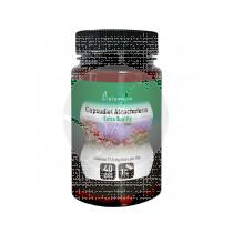 Alcachofera Capsudiet 40 capsulas Plameca