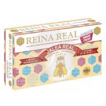 REINA REAL INFANTIL JALEA REAL VIALES ROBIS