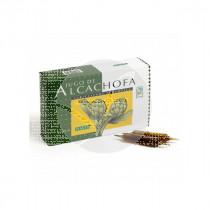 Alcachofa Eco viales Plantis