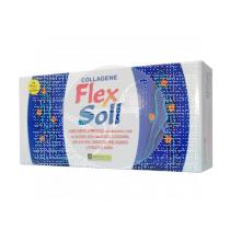 Colageno Collagene Flex Soll viales Phytovit