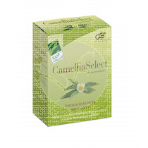 Camellia Select Extracto Te verde 100% Natural