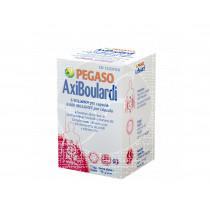 Axiboulardi Cap Pegaso