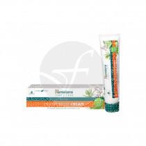 Pomada Antiseptica 20gr Himalaya Herbals