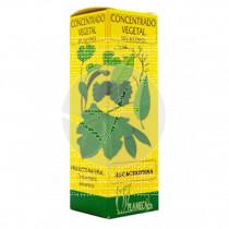 Extracto De Alcachofera sin Alcohol 50 ml Plameca