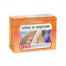 Vittal In Express Jalea 1000Mg Plameca