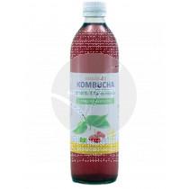 Bebida Kombucha Te verde y Flor De Hibisco Eco Bioener
