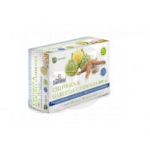 CHITOSAN Y GARCINIA CAMBOGIA 800MG NATURE ESSENTIAL