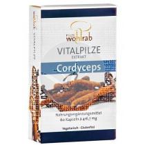 Cordyceps 60 capsulas Pilze Wolhrab