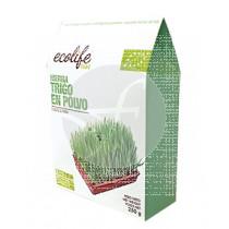 Hierba De Trigo Bio En polvo Ecolife Food