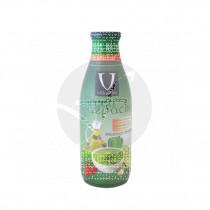 Gazpacho verde 100% natural cristal Villaolivo