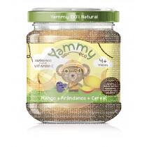 Potito De Mango Arandanos y Cereal Eco Yammy