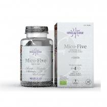 Mico Five +Chaga 594Mg 70 capsulas Hifas Da Terra