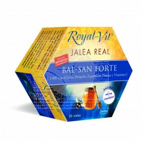 JALEA REAL ROYAL-VIT BAL-SAN FORTE DIETISA