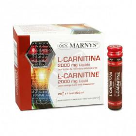 Carnitina viales 2000Mg Naranja Marnys