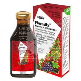 Floradix hierro vitaminas 250ml Salus