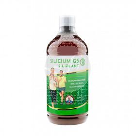 Silicium G5 Siliplant 1L Silicium España