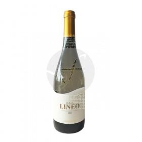 Vino Blanco Lineo Blanc Eco Pedregosa