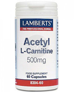 ACETIL L CARNITINA 500MG
