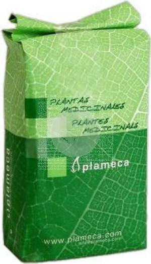 Stevia Hoja Nacional Extra 1 Kg Plameca